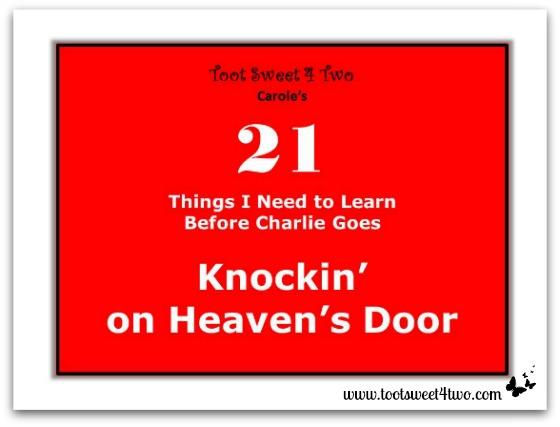 21 Things Knockin on Heaven's Door cover