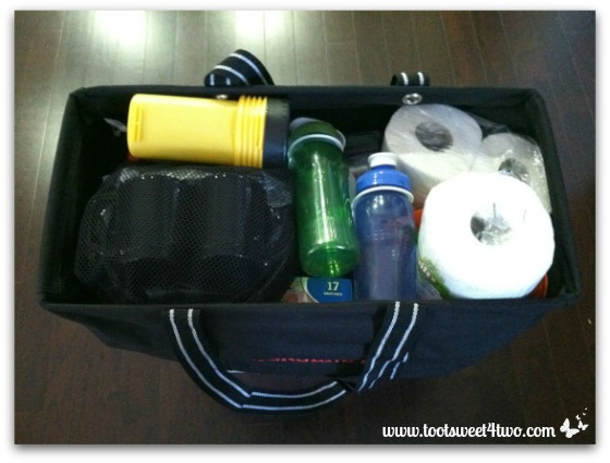 Emergency supplies in carrying bag
