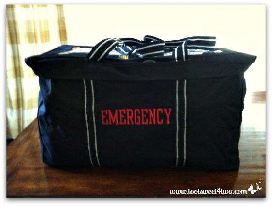 Packed emergency bag