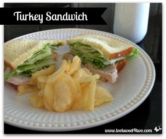 Turkey Sandwich cover