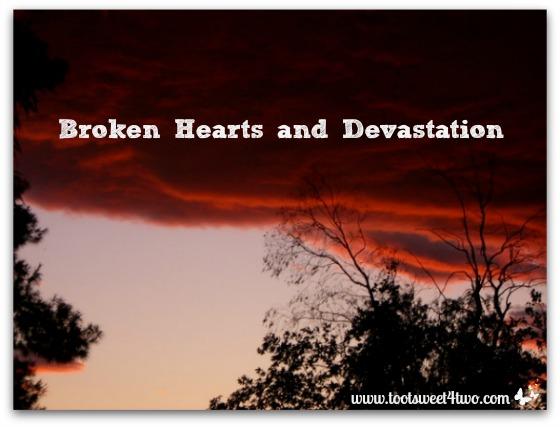 Broken Hearts and Devastation cover