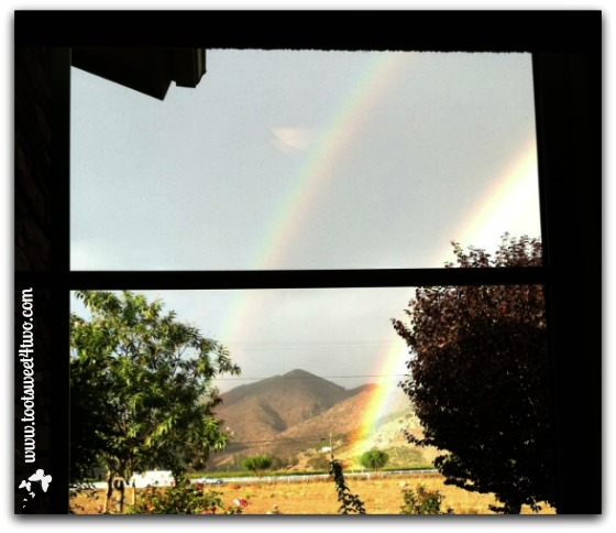 Double-rainbow from my office window