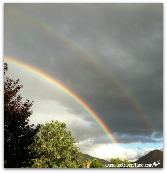 Double rainbow - right view