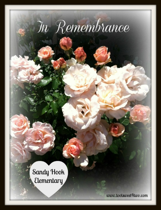 In Remembrance - Sandy Hook Elementary