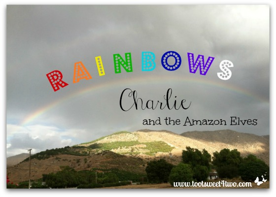 Rainbows, Charlie and the Amazon Elves cover