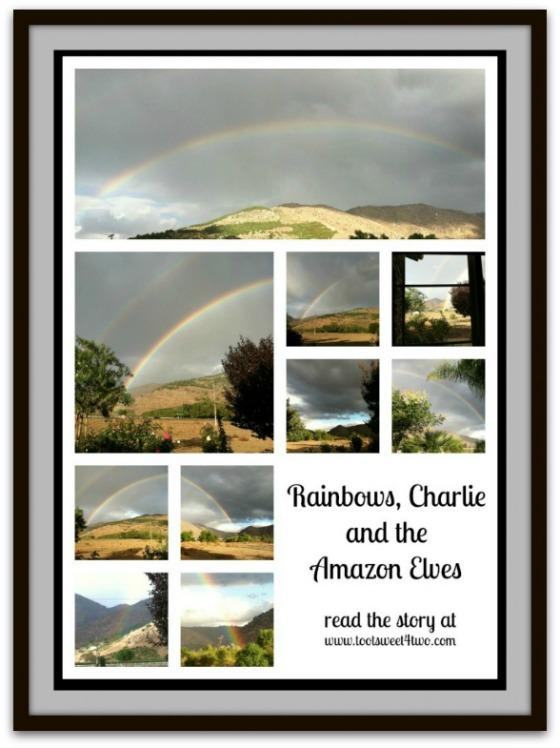 Rainbows, Charlie and the Amazon Elves