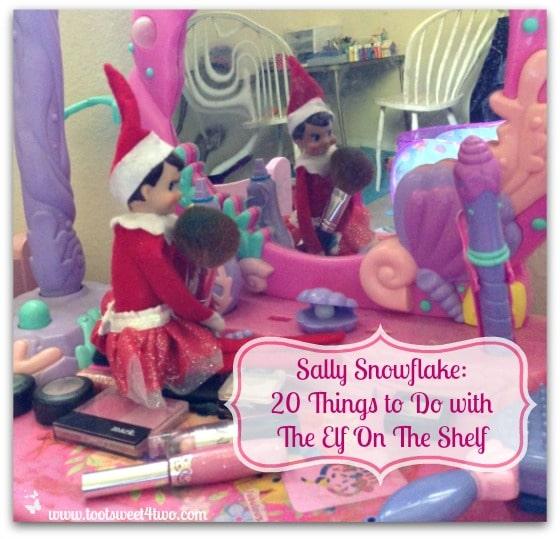 Sally Snowflake cover