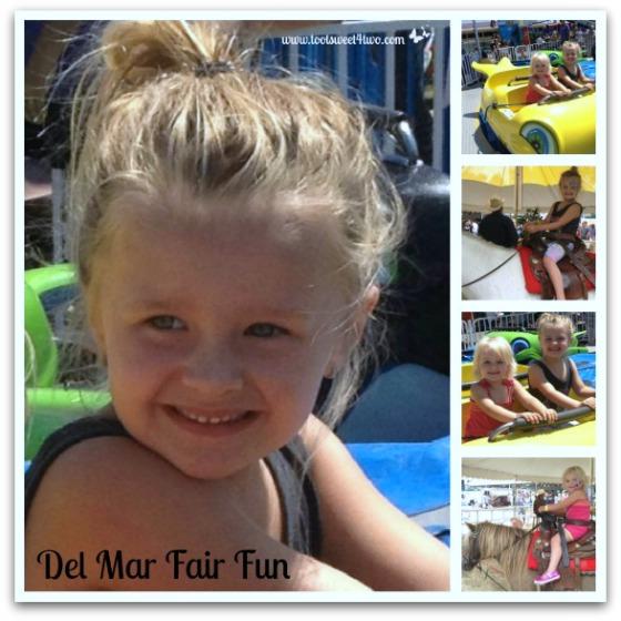 Del Mar Fair Fun - 42 Things to do in San Diego