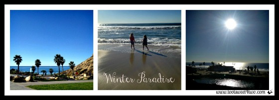 Winter Paradise collage
