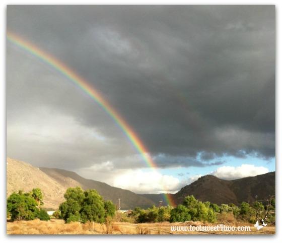 Dorothy's Rainbow