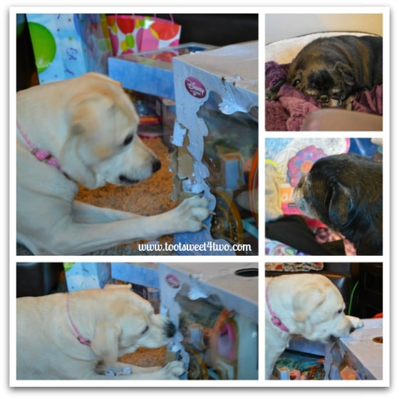 Gift Opening Helpers