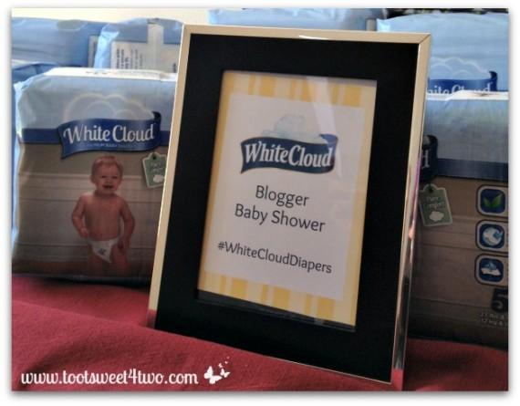 White Cloud Diaper Blogger Baby ShowerWhite Cloud Diaper Blogger Baby Shower