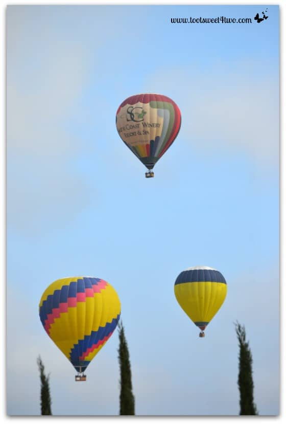 3 Hot Air Balloons skimming the trees