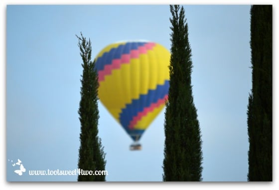 Spiral Hot Air Balloon and 3 trees