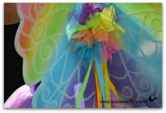 Close-up of Rainbow Fairy Wings