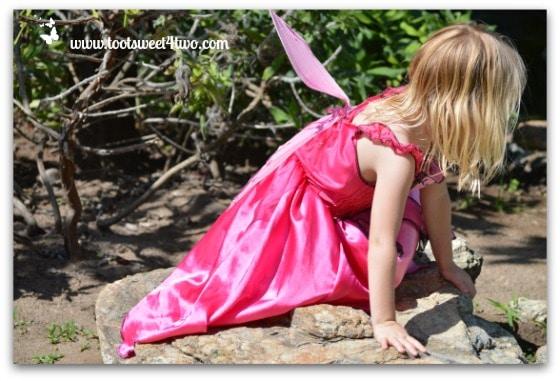 Exploring Fairy