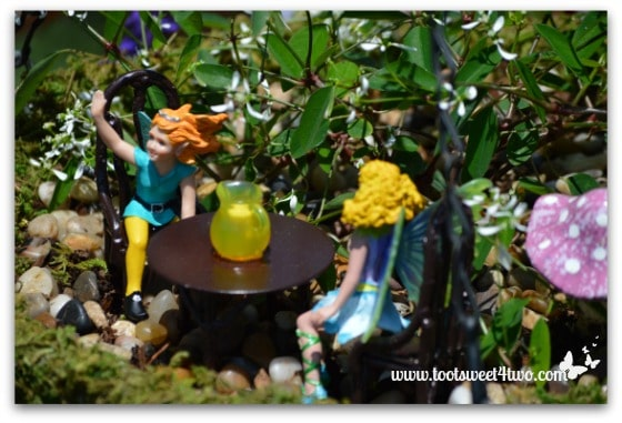 Fairies in the Hanging Basket