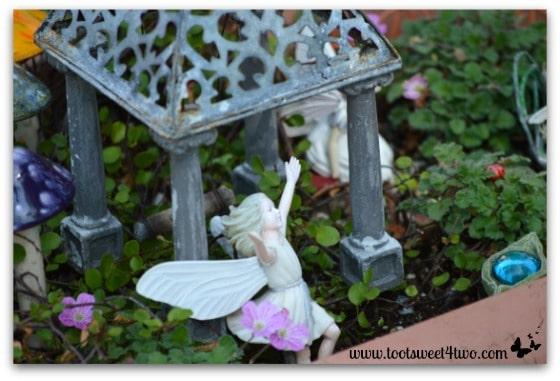 Fairy Garden with a tin gazebo