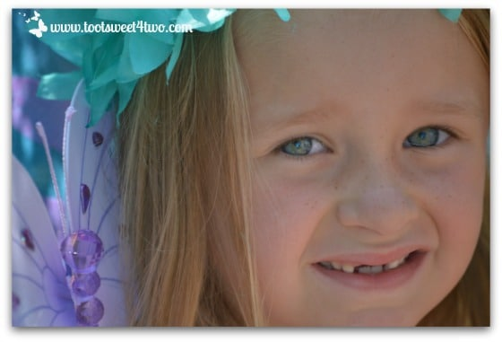Fairy Princess P