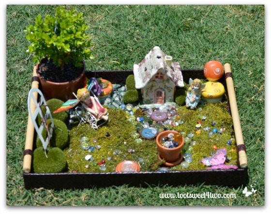 Princess P's Fairy Garden