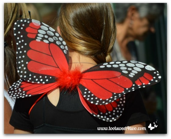 Red and Black Fairy Wings