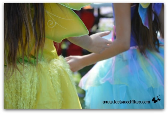 Sunshine and Blue Fairies