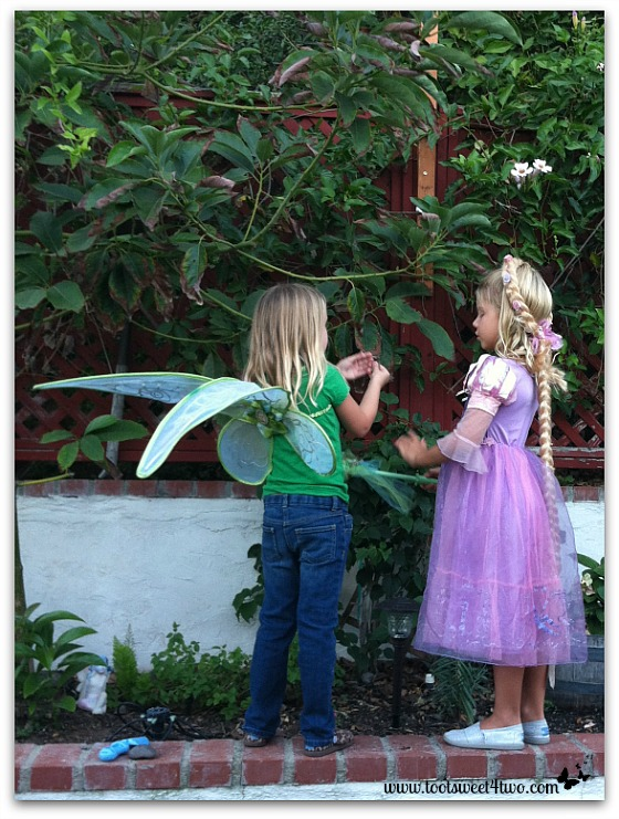 The Fairy and Rapunzel