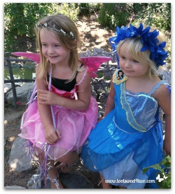 The Princess Fairies 2012
