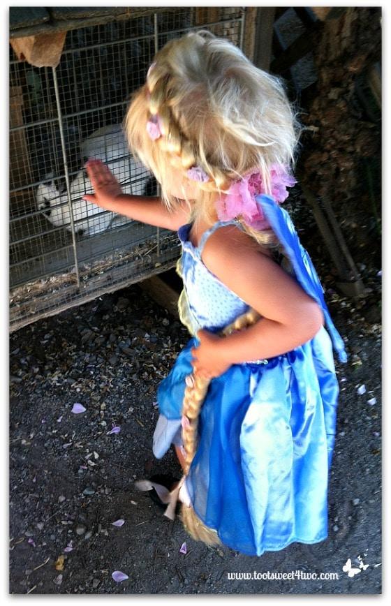 The Rapunzel Fairy 2012