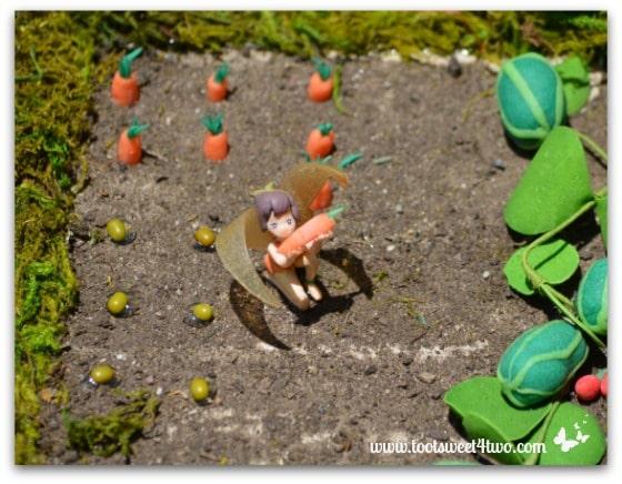 Vegetable Garden in the Fairy Garden