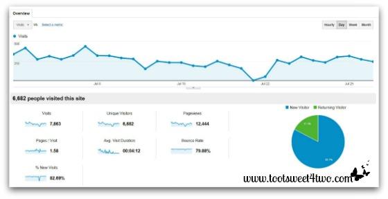 TS4T Google Analytics July 2013