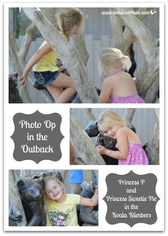 The Princesses P in the Koala Klimbers at the San Diego Zoo