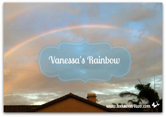 Vanessa's Rainbow