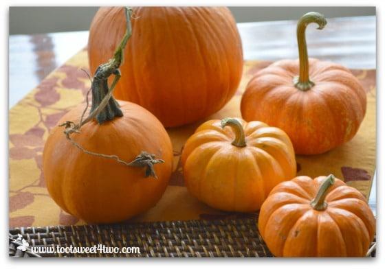 5 little pumpkins