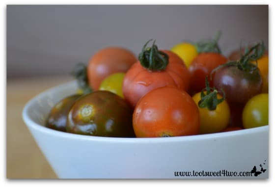 Bowl of heirloom cherry tomatoes