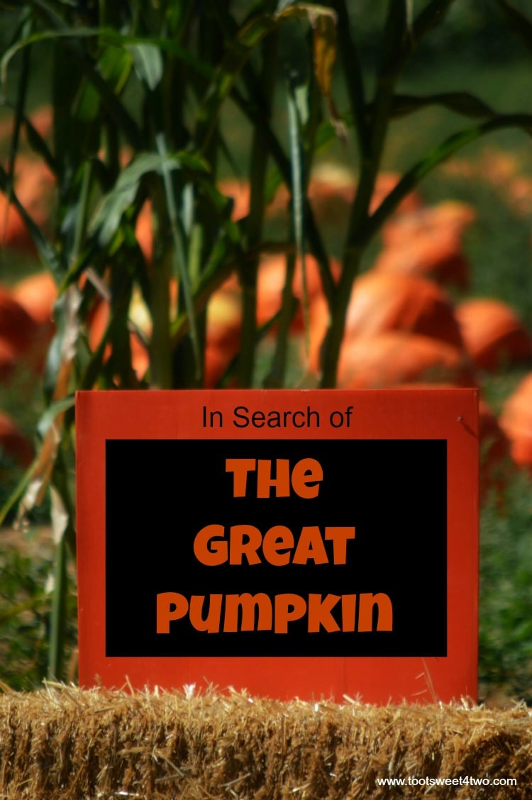 in-search-of-the-great-pumpkin-cover