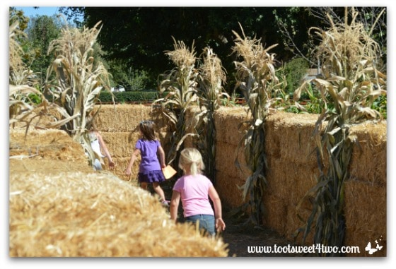 Looking for station #1 in the Straw Maze