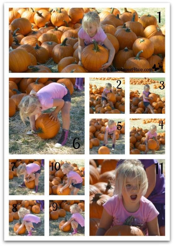 Princess Sweetie Pie drops her pumpkin