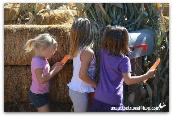 Stamping their cards in the Straw Maze