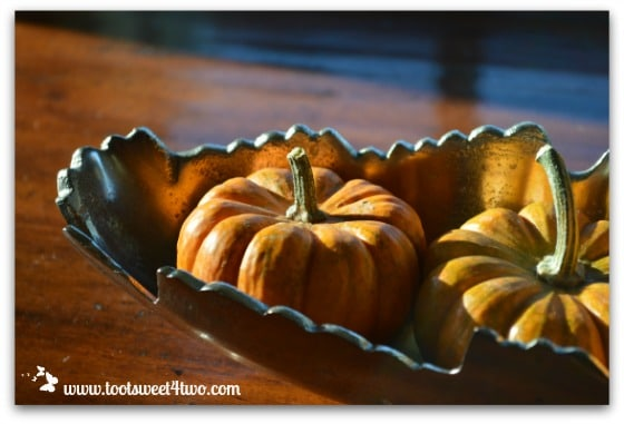 Two mini pumpkins in the morning light
