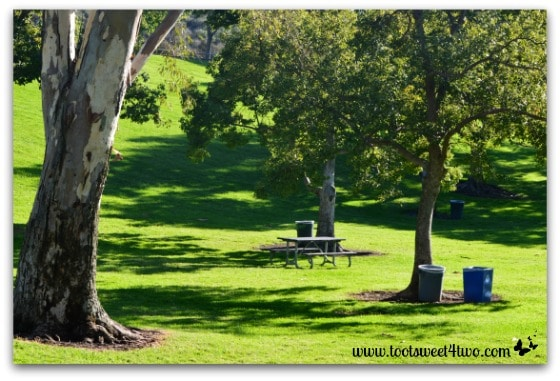 Lake Poway picnic area in the rolling hills