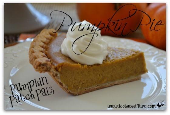 Pumpkin Patch Pals Pumpkin Pie