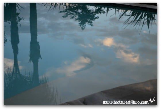 Picture 3 - Clouds reflected in our pool - November 23, 2013