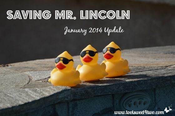 Saving Mr. Lincoln – January 2014 Update