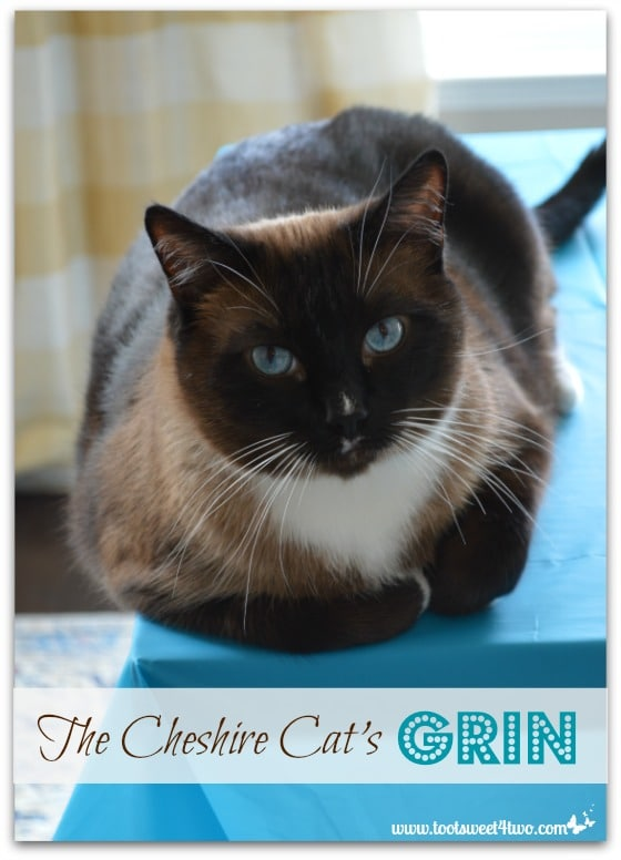The Cheshire Cat's Grin - Coco Pinterest