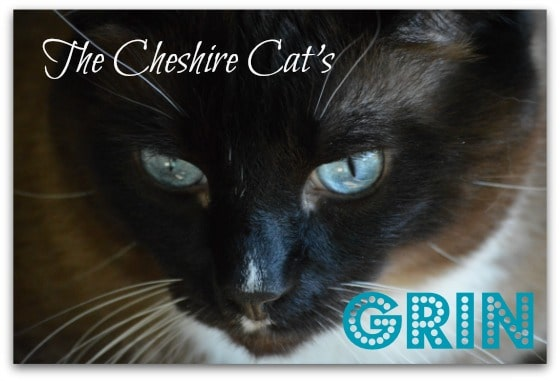 The Cheshire Cat's Grin - cover