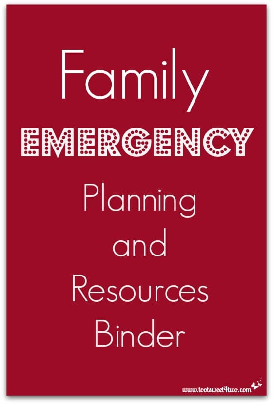Family Emergency Planning and Resources Binder cover