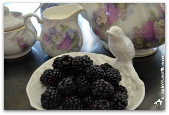 Blackberries in bird bowl - The Charms of Afternoon Tea