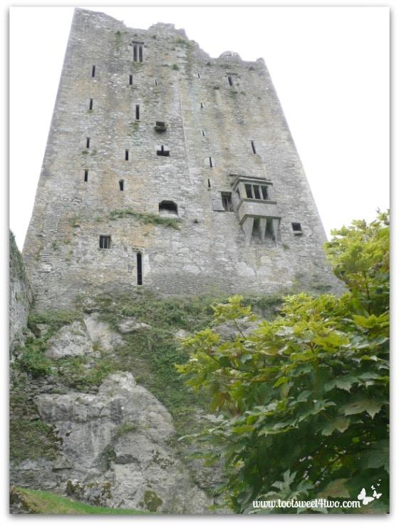 Blarney Castle looking up