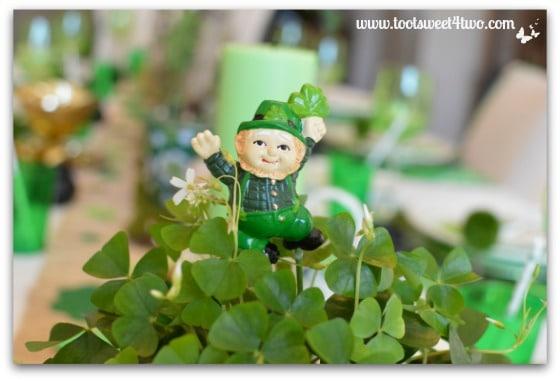 Happy Leprechaun in a field of Shamrocks